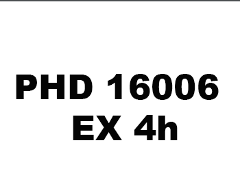 16006-ex4h